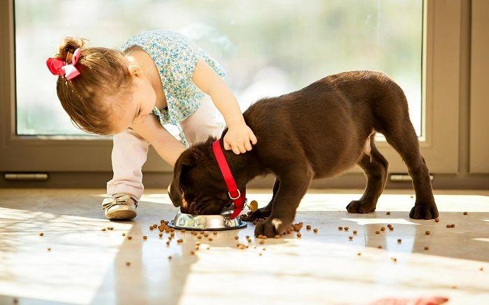 девочка и щенок фото