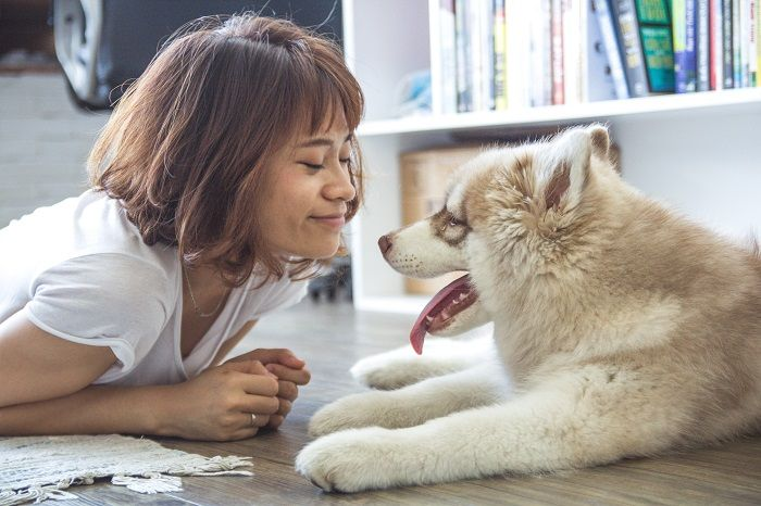 человек и собака фото